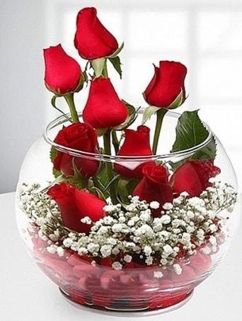 Kırmızı Mutluluk fanusta 9 kırmızı gül  Siirt çiçek yolla