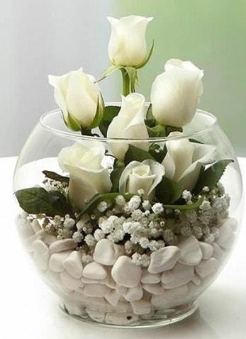Beyaz Mutluluk 9 beyaz gül fanusta  Siirt çiçek yolla