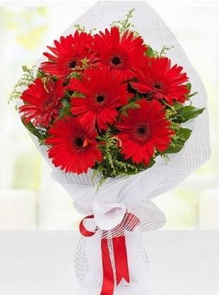 Kırmızı Gelbera Buketi  Siirt çiçek satışı