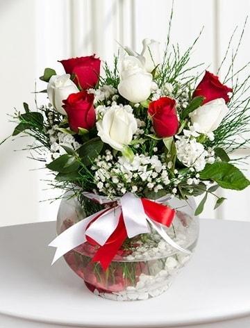 Aşk Küresi  5 beyaz 5 kırmızı gül fanusta  Siirt çiçek gönderme