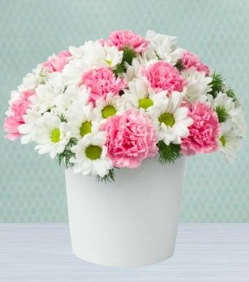 Seramik vazoda papatya ve kır çiçekleri  Siirt çiçek yolla