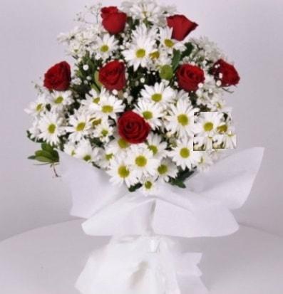 7 adet kırmızı gül ve papatyalar krizantem  Siirt çiçek gönderme