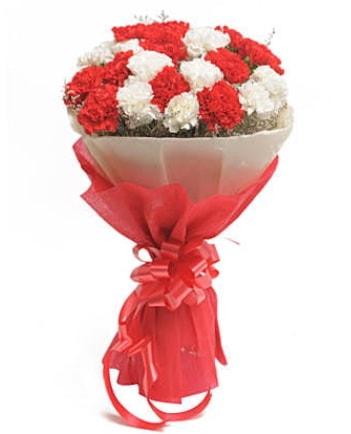 21 adet kırmızı beyaz karanfil buketi  Siirt yurtiçi ve yurtdışı çiçek siparişi