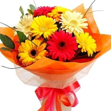 9 adet karışık gerbera buketi  Siirt online çiçekçi , çiçek siparişi