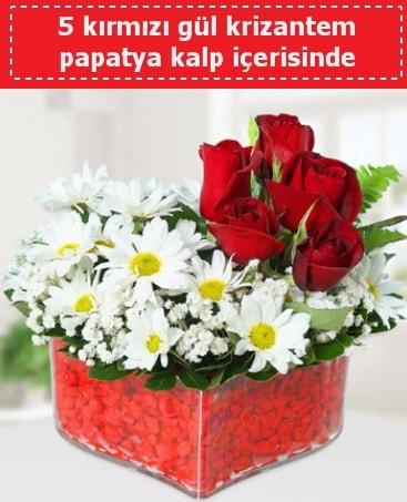 mika kalp içerisinde 5 kırmızı gül papatya  Siirt kaliteli taze ve ucuz çiçekler