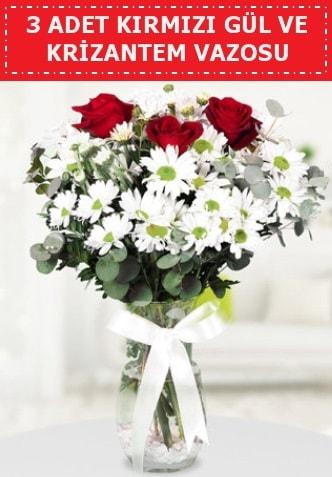3 kırmızı gül ve camda krizantem çiçekleri  Siirt kaliteli taze ve ucuz çiçekler