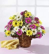Siirt çiçekçi telefonları  Mevsim çiçekleri sepeti